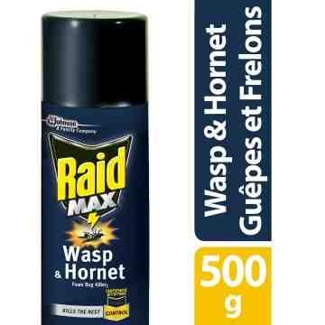 Raid Max - Wasp & Hornet Foam Bug Killer 2 - 12/500g