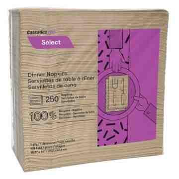 Select® 1/8 Fold Dinner Napkins, 1 Ply, 12/Case