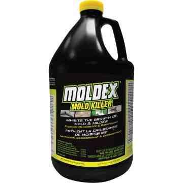 MOLDEX BY RUSTOLEUM  Moldex® Mold Killer, Jug, 3.78 L - 1